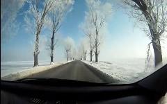 白い並木がとても美しいルーマニアの道路を走行しちゃう動画