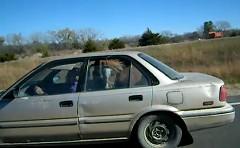 おぉおお!?乗用車の車内に馬を乗せて走ってる面白動画