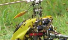 ラジコンヘリ vs スズメバチの大群 異種対決動画