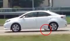 あわわわわ!レクサス HS250h がガソリンを垂れ流しながら走ってる動画