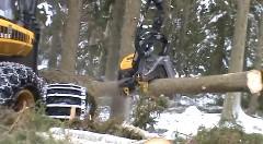 あっという間に丸太を作り出す木こりマシンがカッコイイお仕事動画