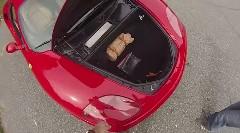 フェラーリ 360 モデナのトランクに大人一人が入れるか試してみた動画
