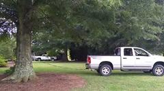ピックアップトラックで大木を引っこ抜くよ