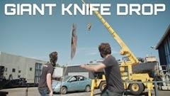プリウスの上から巨大なナイフを落としてみた