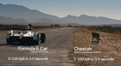 フォーミュラ E vs チーター 異種ドラッグレース対決動画