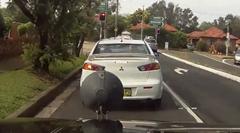 渋滞を避けて交差点を通過しようとする奴