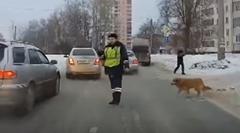 困っているワンちゃんに救いの手を差し伸べる優しい警官