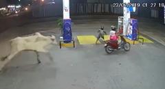 ブラジルのガソリンスタンドを襲ったビックリ動画