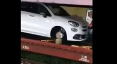 鉄道輸送中の新車フィアット 500X からタイヤが大量に盗まれる!