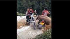 細い山道をバイクで移動する女性達あれこれ