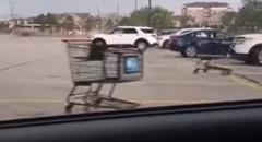 「もう我慢できねぇ!」ショッピングカート一揆が勃発!